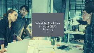 Image of team members standing around a table with work laptops and in the middle is text saying 'What to look for in your SEO agency'